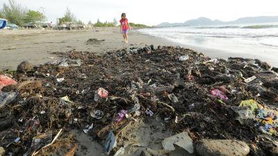 Plastskräp på strand
