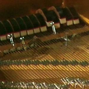 Ruuveja ja kumilenkin pätkiä flyygelin kielillä John Cagen Amores-sävellystä varten.