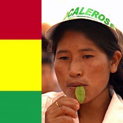 Vasemmalla Bolivian lippu ja oikealla nainen pureskelee kokanlehteä.