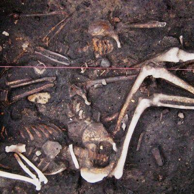 Kolmen ihmisen luurangot sekaisin hautakuopassa.