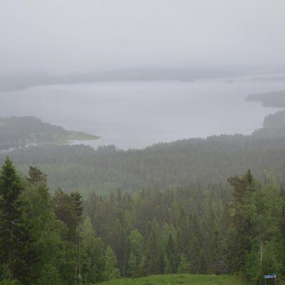 Näkymä Vuokatinvaaralta Sapsojärvelle sateisena ja sumuisena kesäpäivänä.