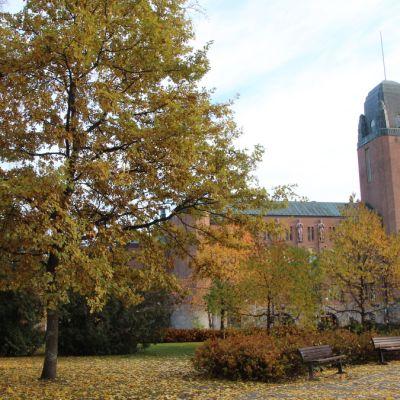 Joensuun kaupungintalo lokakuussa 2014.