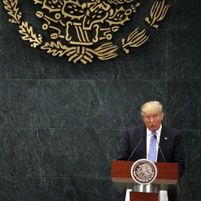 Meksikon presidentti ja Donald Trump seisovat puhujankorokkeiden takana. Oikealla oleva Trump puhuu. Trumpia kuuntelevan Enrique Peña Nieton takana näkyy Meksikon lippu. Tummalla marmorilta näyttävällä seinällä takana näkyy suuri kultainen vaakunakuvio.