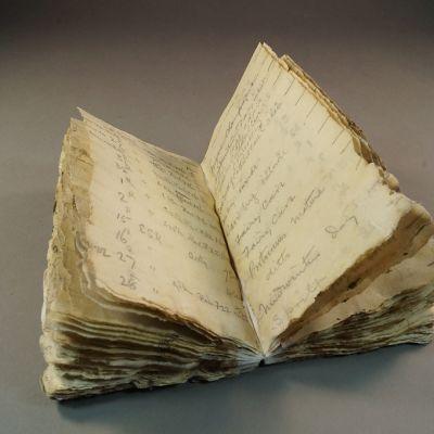 Sata vuotta jään alla ollut ja Etelämantereelta löytynyt Robert Scottin naparetkikuntaan kuuluneen George Murray Levickin muistikirja.
