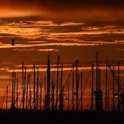 Oranssinpunainen auringonnousu veneiden mastojen takana.