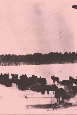 Hevossaattue jäällä.