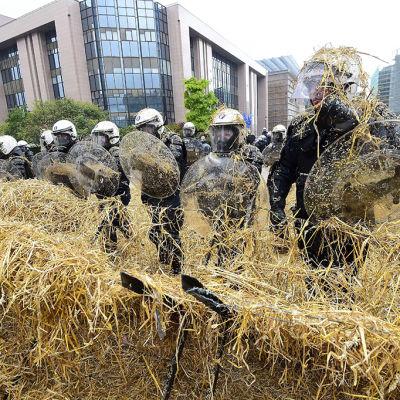 Bönderna demonstrerade i Bryssel - kravallpolisen tog till vattenkanoner