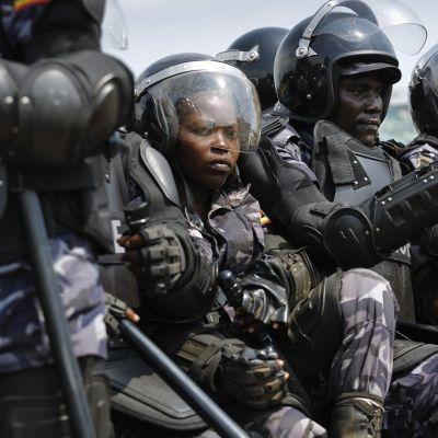Aseistettuja mellakkapoliiseja istuu auton lavalla.