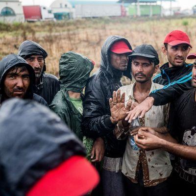 Kymmenen miehen joukko pellolla sadeasusteissa.