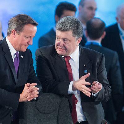 David Cameron ja Petro Porošenko.