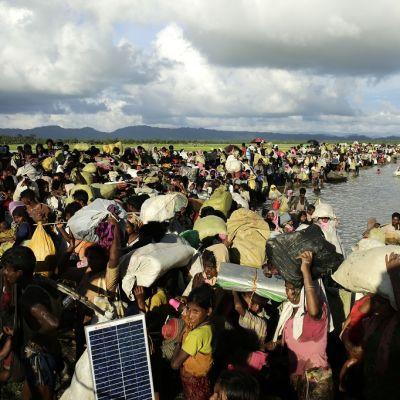 Suuri väkijoukko kahlaa tavaroita kantaen joen yli.