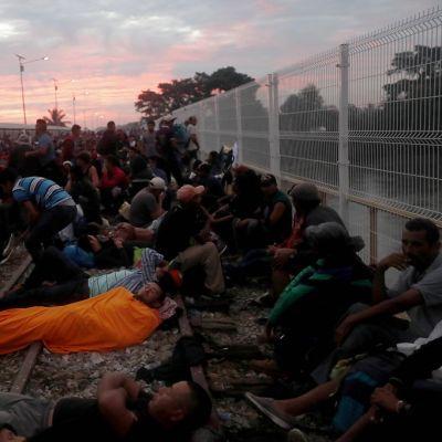 Kuvassa ihmisiä istumassa ja makuulla. Oikeassa laidassa raja-aita.