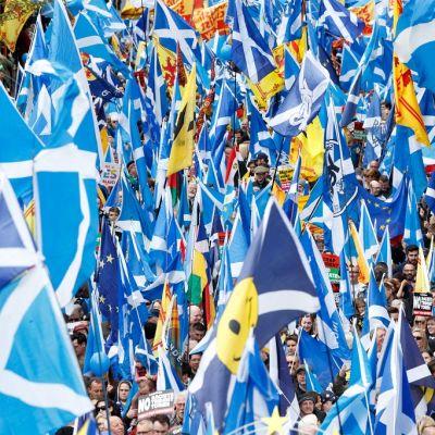 Kuvassa paljon Skotlannin lippuja mielenosoituksessa.
