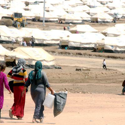 Jesidien pakolaisleiri Pohjois-Irakissa.