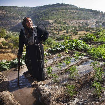 Nainen viljelysten äärellä.
