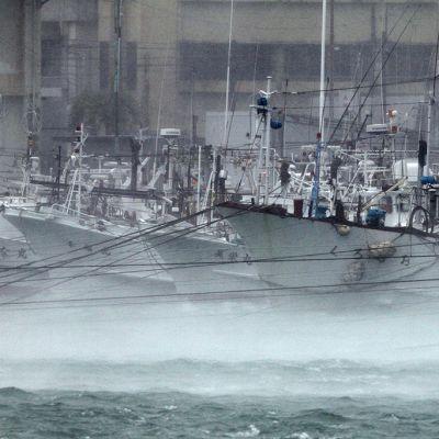 Laivoja Itomanin saarella Okinawassa 8. heinäkuuta 2014 taifuuni Neogurin lähestyessä.