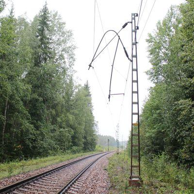 Vaurioituneita sähköjohtimia.
