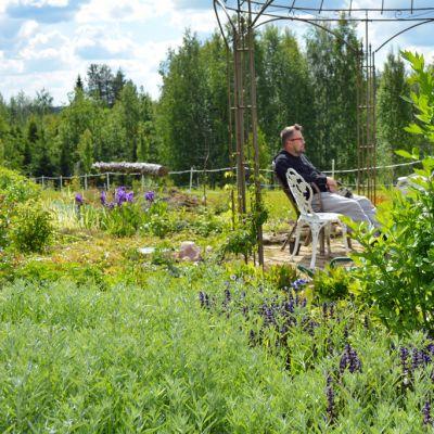Taiteilija Urho Kähkönen istuu keskellä puutarhaansa mietteliäänä.