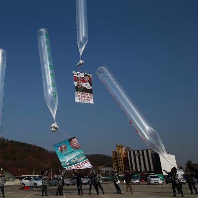 Ihmisoikeusaktivistit ja pohjoiskorealaiset loikkarit lähettävät ilmapallojen mukana propagandalehtisiä, dollariseteleitä ja DVD-levyjä kohti Pohjois-Koreaa läheltä demilitarisoitua vyöhykettä Koreoiden välillä.