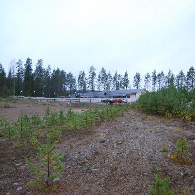 Yksityisen päiväkoti Kädenjäljen viereen Uuraisten Hirvaskankaalle soramonttuun nousee uusi koulu.