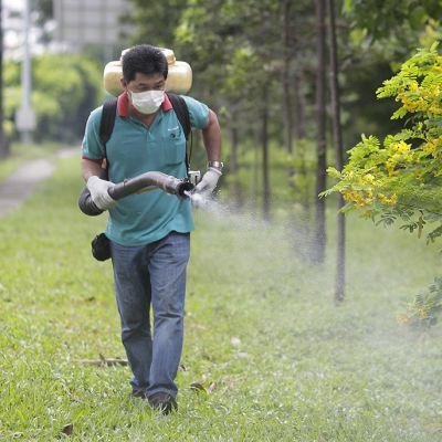 Tuholaistorjuntayrityksen työntekijä suihkutti myrkkyä.