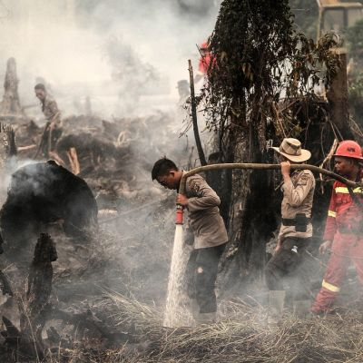 Sammuttajat ruiskuttavat vettä mustuneessa metsässä.