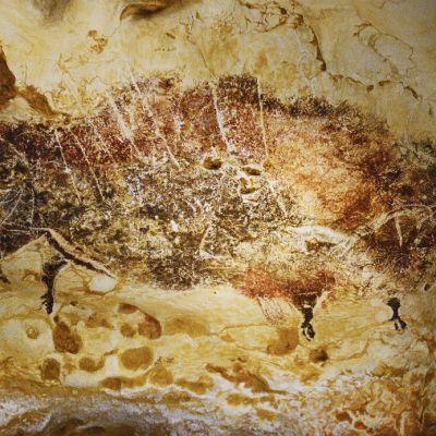 Ruskealla maavärillä maalattu biisoni kiviseinässä.