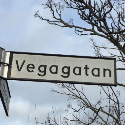 Gatuskylt med texten Vegagatan