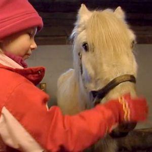 Tyttö ja valkoinen hevonen