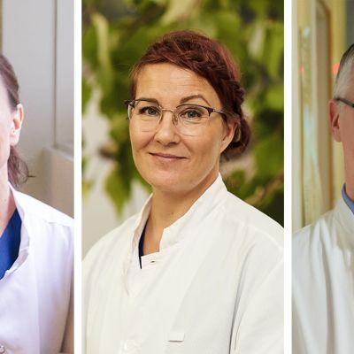 Eeva Rahko, Leena Surakka ja Juho Lehto.
