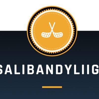 SALIBANDYLIIGA