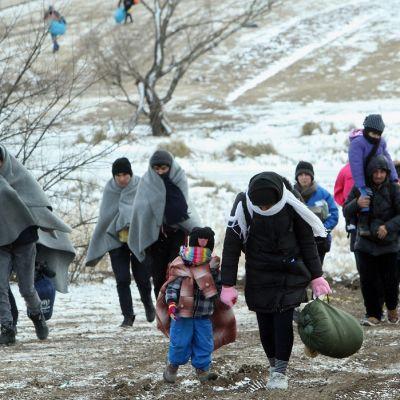 Syyriasta, Irakista ja Afganistanista saapuneita turvapaikanhakijoita lähellä Makedonian ja Serbian rajaa 18. tammikuuta 2016.
