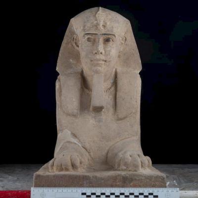 Patsas jolla on ihmisen pää ja leijonan ruumis, edessä viivotin josta näkyy että patsaan leveys vajaat  30 senttiä.