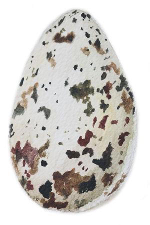 Vesivärimaalaus ruokin munasta