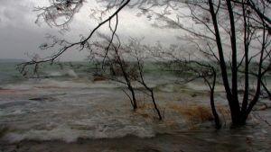 Syysmyrsky Särkkäniemellä Vuosaareen Uutelassa