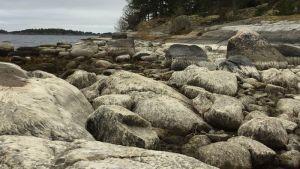 Lågt vattenstånd i Ekenäs hösten 2016
