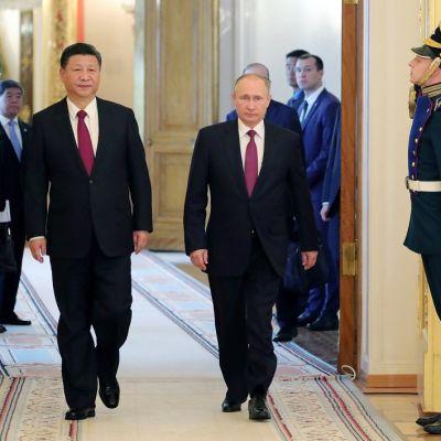 Xi ja Putin kävelevät saliin suuresta pariovesta. Miehillä on mustat puvut ja lähes identtisen punaiset kravatit. Oven molemmin puolin seisoo sotilas paraatiunivormussa ja tekee kunniaa tulijoille. Taustalla näkyy kiinalaisia ja venäläisiä virkamiehiä.