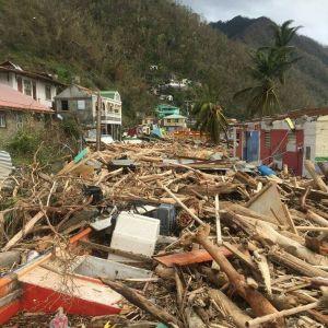 Bråte på ön Dominica efter orkanen Maria.