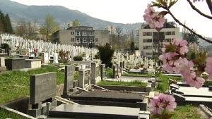 Hautausmaa Sarajevossa