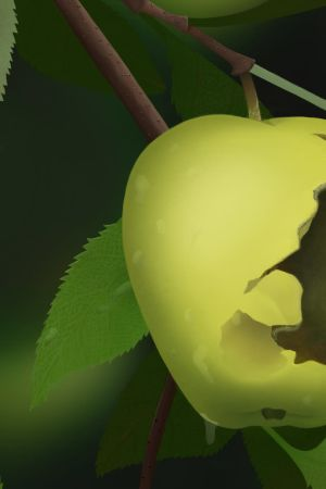 Mätä omena