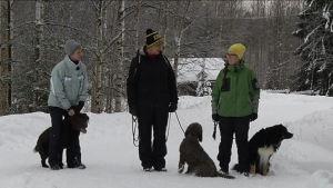 Kolme naista koirineen ulkona lumisessa maisemassa