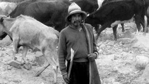 Perulainen paimen vuonna 1969