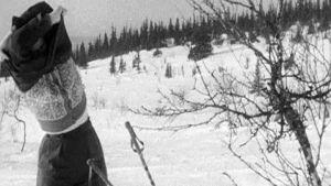 Hiihtäjä riisuu paitaa fimissä Aurinko paistaa Pallaksella (1949)
