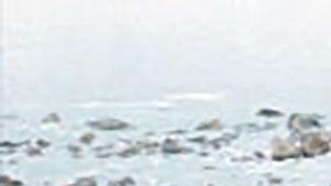 Eskimotyttö ohjelmassa Luonto on vielä meidän: Arktinen impressio. Arktinen essee (1986)