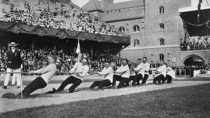 Köydenvetoa Tukholman olympialaisissa 1912.