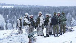 Svenska och finska soldater över i Rovajärvi i Lappland i november 2016