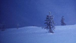 Snöigt landskap i skymningen