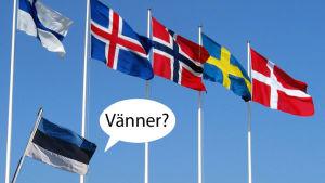 redigerad humorbild på flaggor.