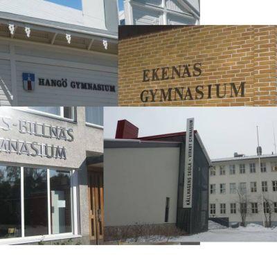 De svenskspråkiga gymnasierna i Hangö, Ekenäs, Karis och Virkby