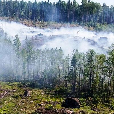 Skogsbrand i Luk i Esbo.